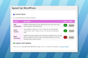 Speed Up WordPress settings panel
